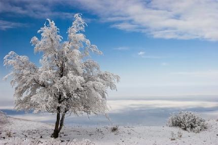 Paesaggi invernali imbiancati | Photogallery | Tiscali ... Jennifer Aniston