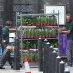 A Westminster Abbey e Buckingham Palace fervono i preparativi per il royal wedding di William e Kate