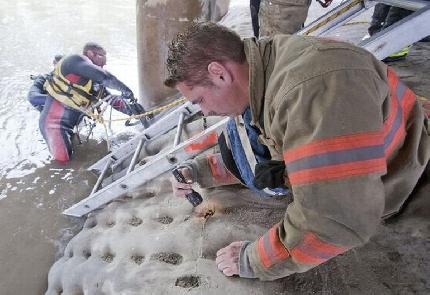 Cane intrappolato rischia di annegare: notato da un passante viene salvato dai vigili