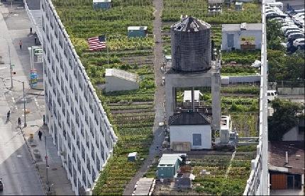 Giardini Piscine E Persino Orti Sui Tetti Di New York