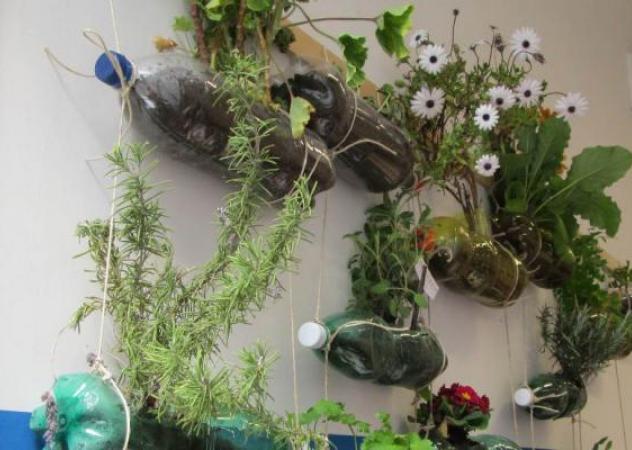 4 esempi di giardino verticale fai da te photogallery - Giardino verticale fai da te ...